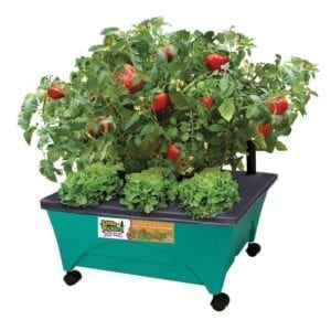 CITY PICKERS 24.5 in. x 20.5 in. Patio Raised Garden Bed Grow Box Kit with Watering System and Casters in Aquamarine