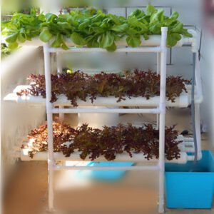 110-220V 3 Layers Hydroponic Grow Kit 12 Pipes 108 Holes Garden Vegetable Planting System Kit Tool Water Culture for Pla