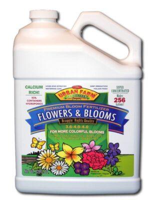 Flowers & Blooms