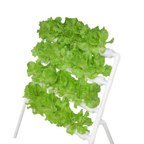 Hydroponics System Balcony Planting Machine 110-220V 36 Holes 4 Pipe Vegetable Planting Rack Soilless Cultivation Pipe